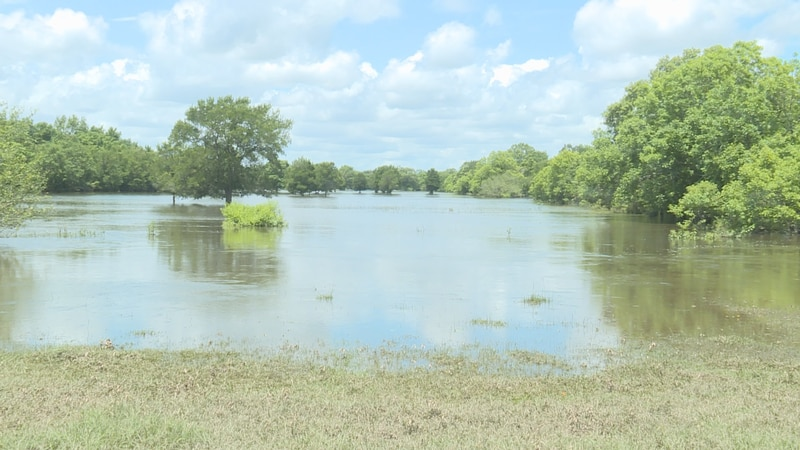 The water flooding Langford's property is 17 feet higher than where it normally is on this...
