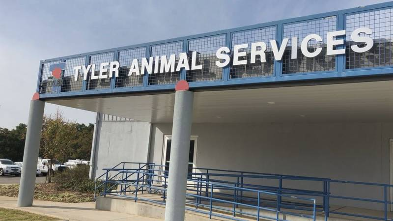 Tyler City Council approved adding new definitions to the city's existing animal cruelty...