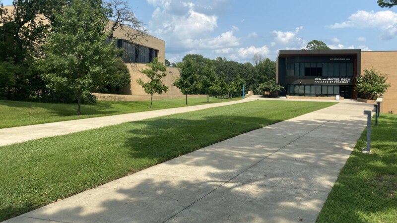 WebXtra: UT Tyler promotes STEM and undergrad research in summer program
