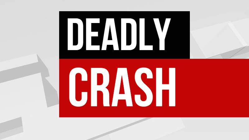 A 24-year-old man from Winona died Sunday morning after striking and hog and losing control of...