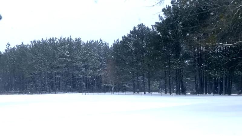 Snow in Marshall, Texas on Feb. 16, 2021