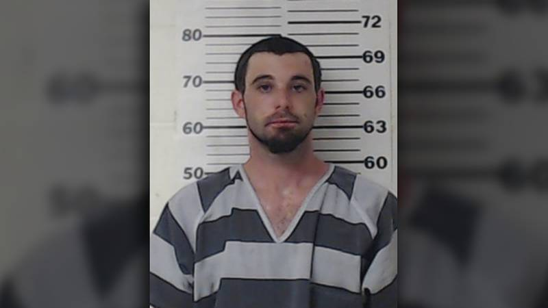 Keaton Carner was arrested after he allegedly tried to fight Henderson County deputies during a...
