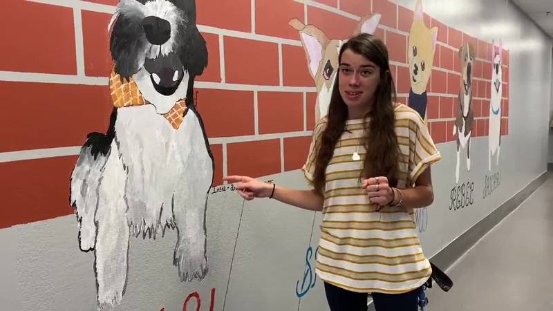 Artist Kim Craig shares the mural she painted at the Tyler Animal Shelter.
