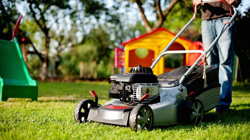 once your grass stops growing for the year, it's a good idea to give it one last cutting at a...