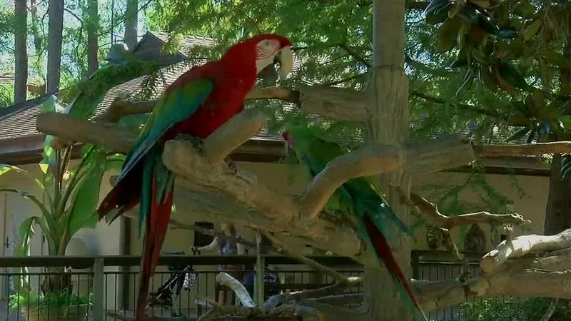 Caldwell Zoo Redesigning  Plans