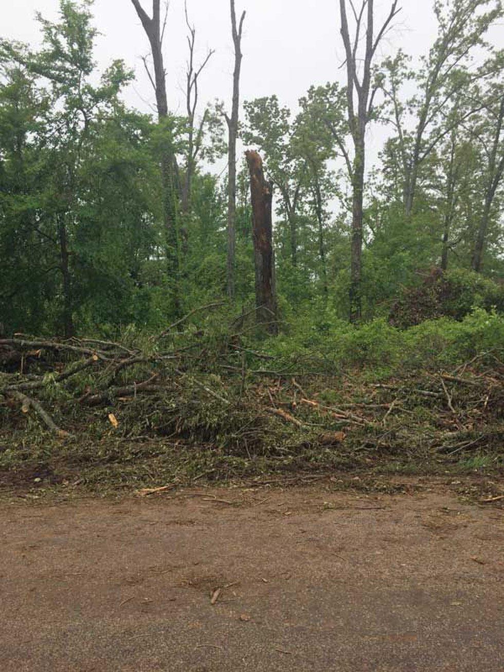 NWS crews confirm a tornado moved through the Hallsville area Thursday night. (Source: KLTV...
