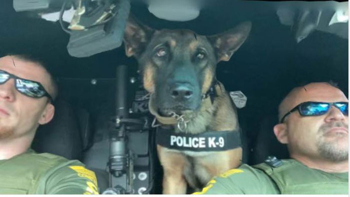 Pictured are Deputy Constable Jeff Hammond, K9 Mata, and Constable Kelly Smith. (Source:...