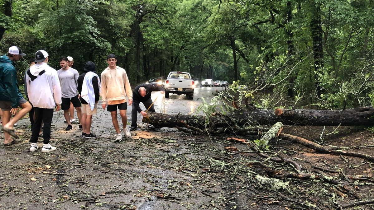 A group of people work to clear a tree that fell across East Side Road near Lake Tyler....