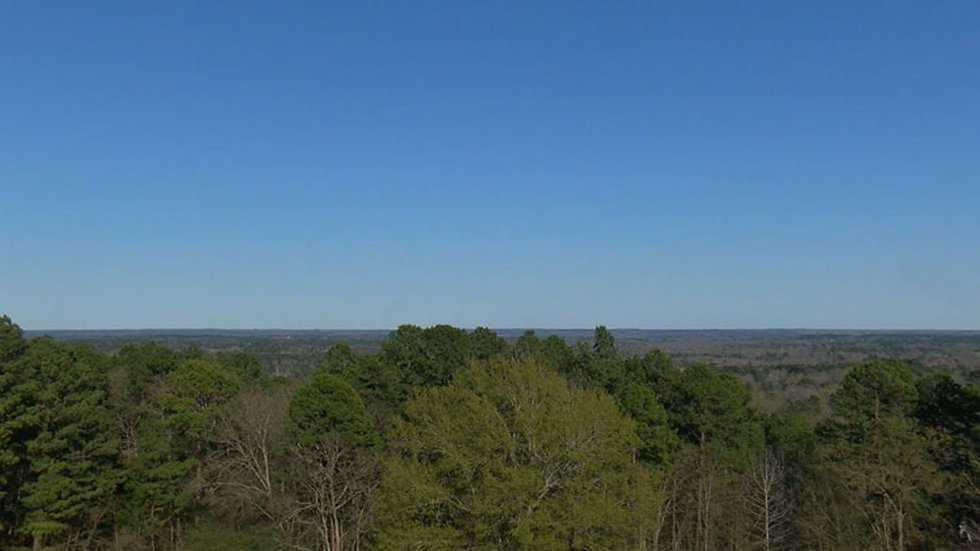 Pictured is the view from Love's Lookout. (Source: KLTV Staff)